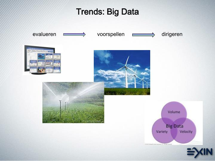 Trends: Big Data