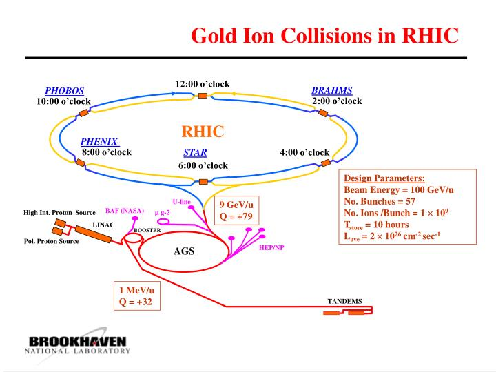 Gold Ion Collisions in RHIC