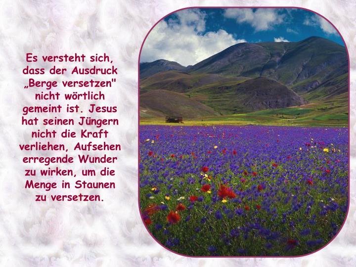 """Es versteht sich, dass der Ausdruck """"Berge versetzen"""" nicht wörtlich gemeint ist. Jesus hat seinen Jüngern nicht die Kraft verliehen, Aufsehen erregende Wunder zu wirken, um die Menge in Staunen zu versetzen."""