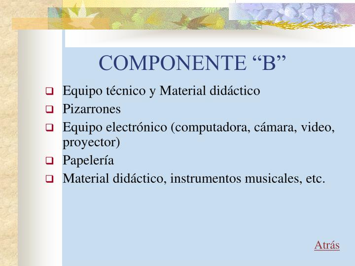 """COMPONENTE """"B"""""""