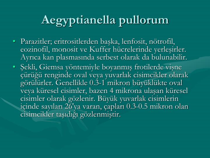 Aegyptianella pullorum