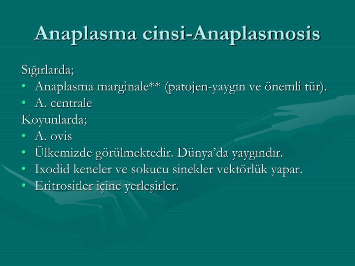Anaplasma cinsi-Anaplasmosis