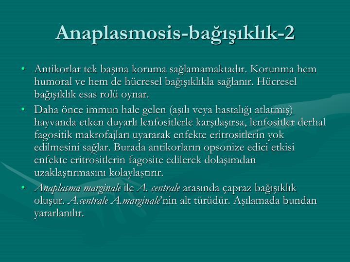 Anaplasmosis-bağışıklık-2