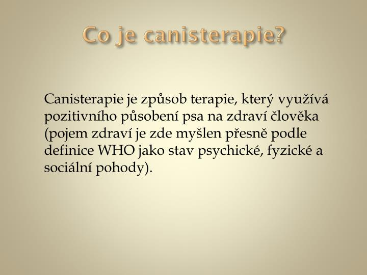 Co je canisterapie