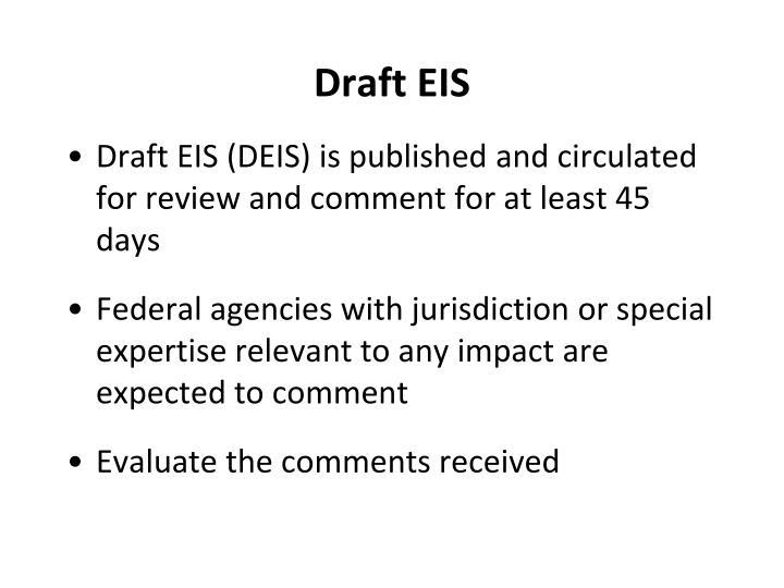 Draft EIS