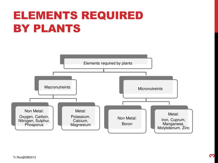Elements required by plants