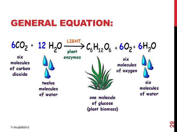 General equation: