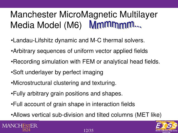 Manchester MicroMagnetic Multilayer Media Model (M6)