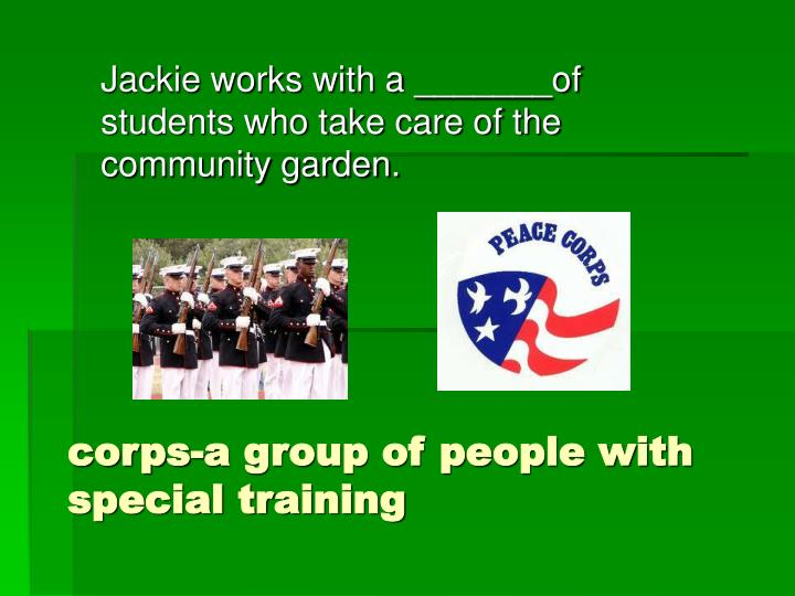corps-a group of people with special training