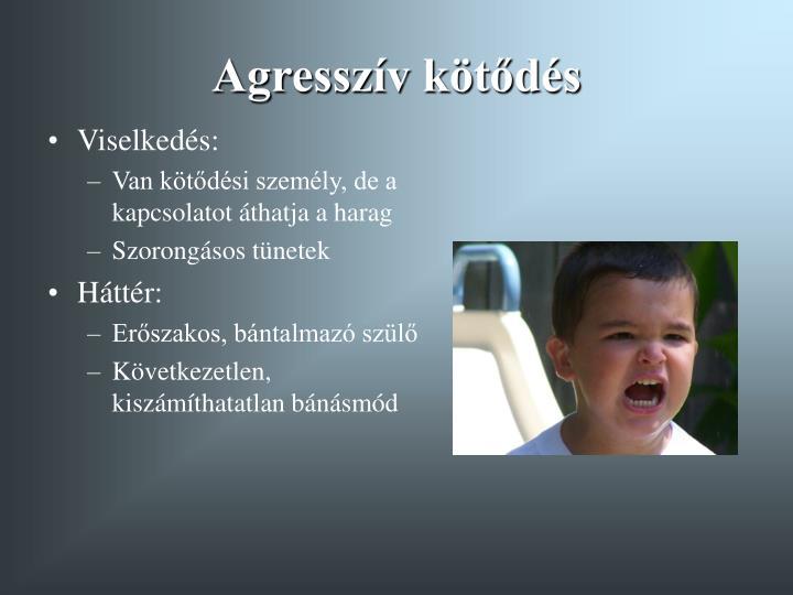 Agresszív kötődés