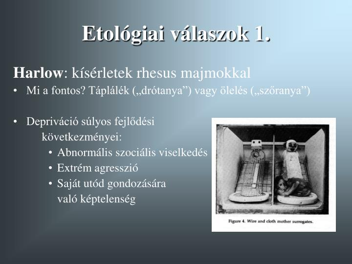 Etológiai válaszok 1.