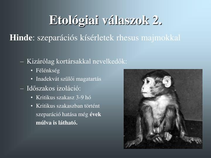 Etológiai válaszok 2.