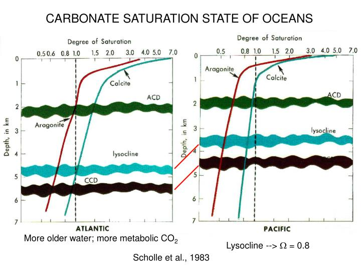 CARBONATE SATURATION STATE OF OCEANS