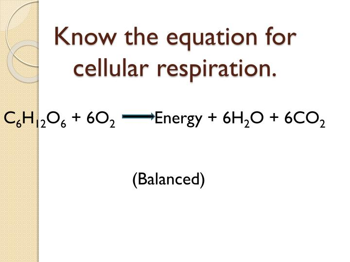 Know the equation for cellular respiration.