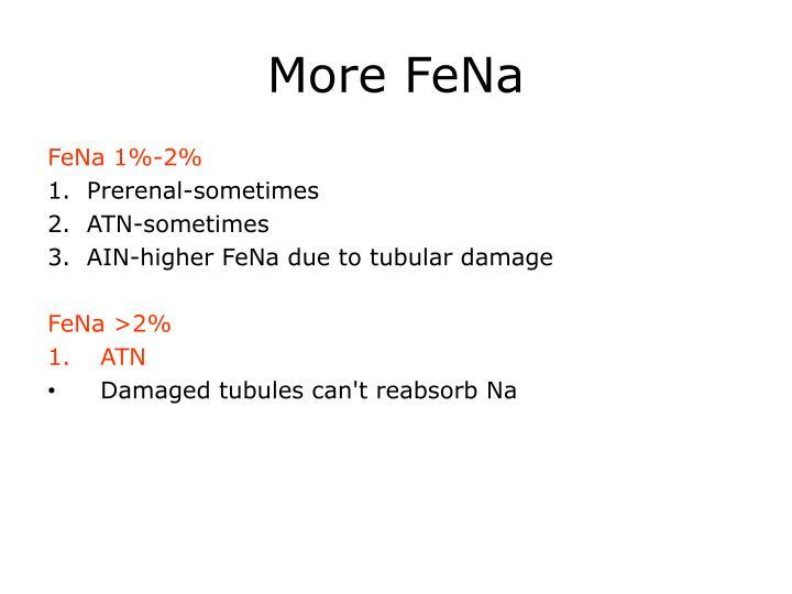 More FeNa