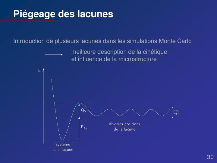 meilleure description de la cinétique et influence de la microstructure