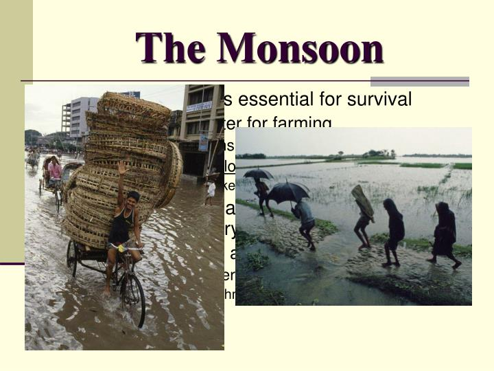 The Monsoon
