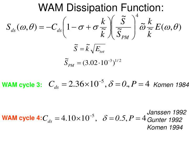 WAM Dissipation Function: