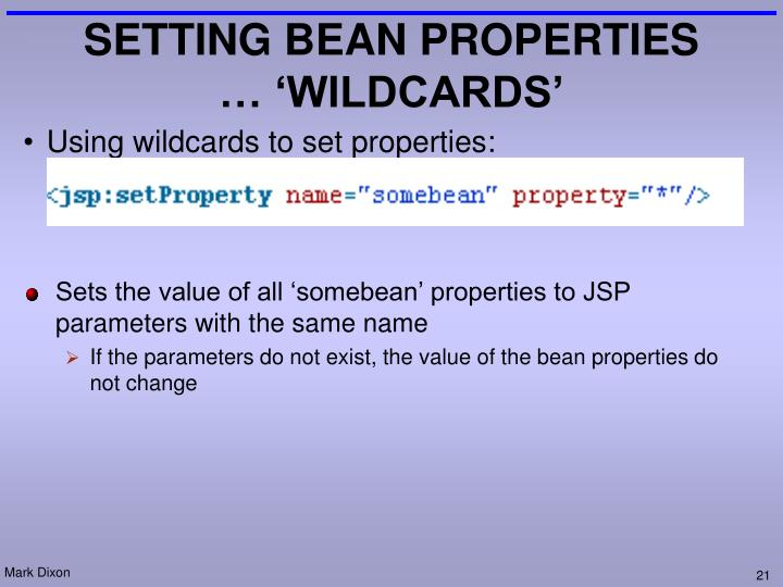 SETTING BEAN PROPERTIES … 'WILDCARDS'