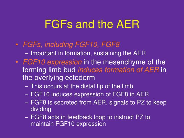 FGFs and the AER
