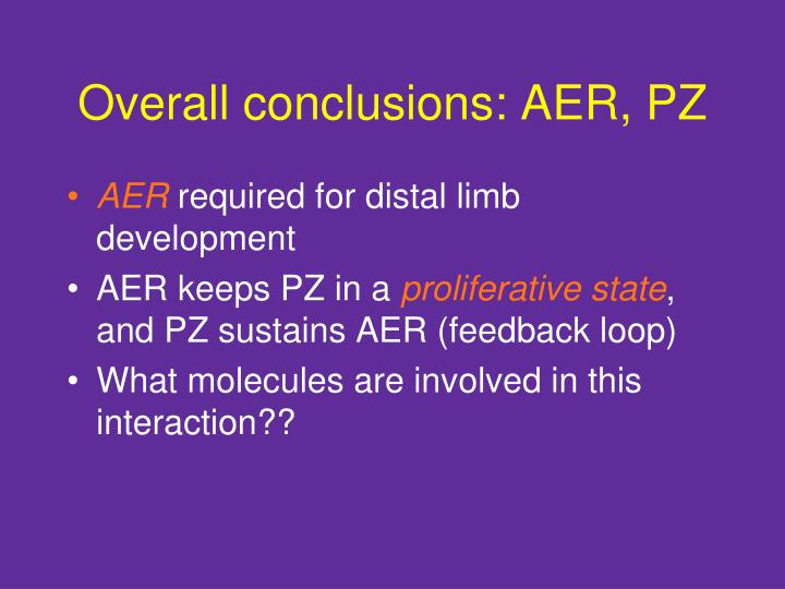 Overall conclusions: AER, PZ