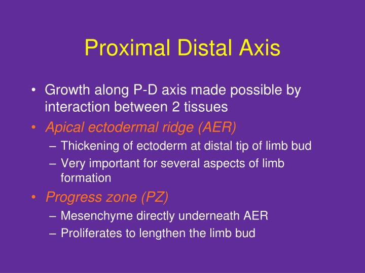 Proximal Distal Axis