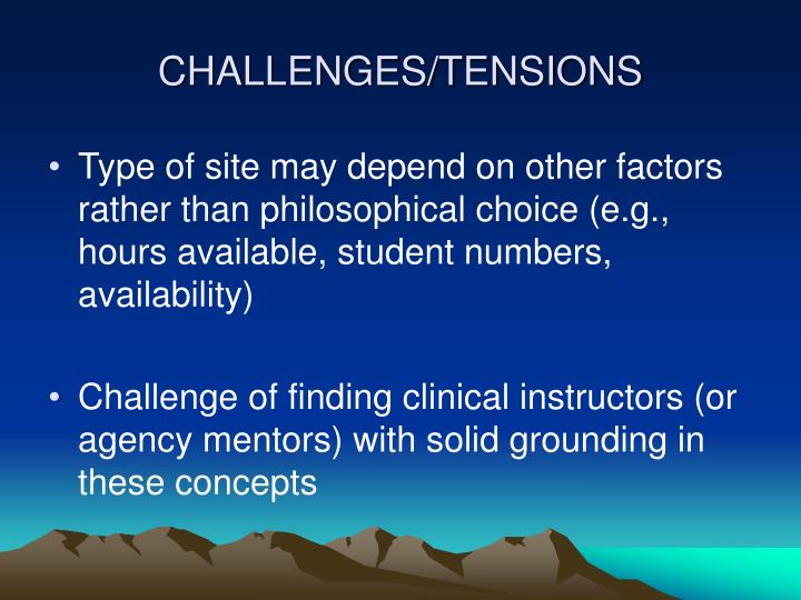 CHALLENGES/TENSIONS