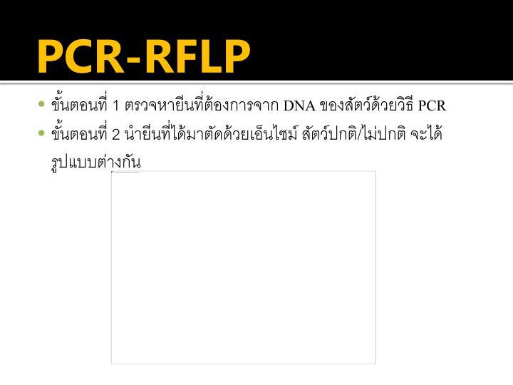 PCR-RFLP