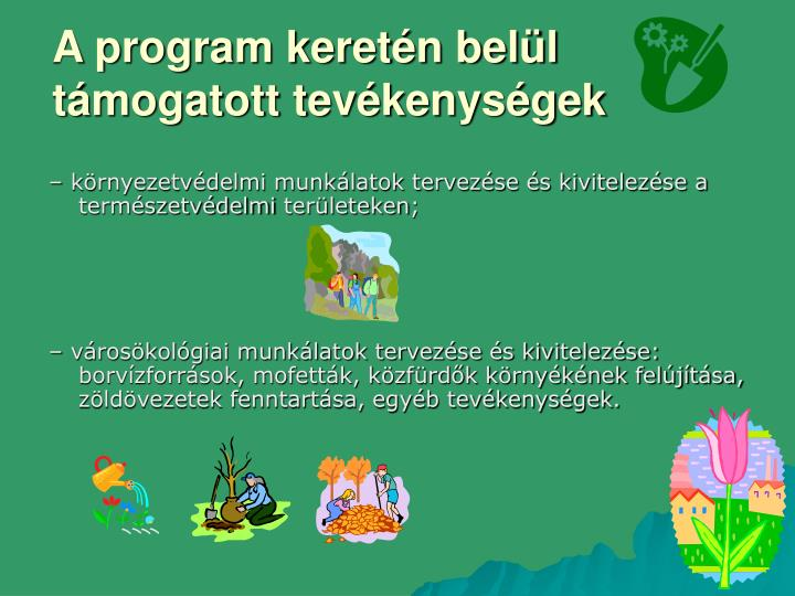 A program keretén belül támogatott tevékenységek