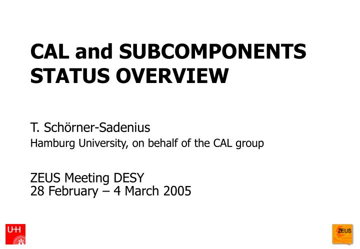 Cal and subcomponents status overview