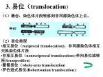 3 translocation