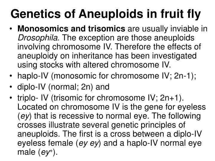 Genetics of Aneuploids in fruit fly
