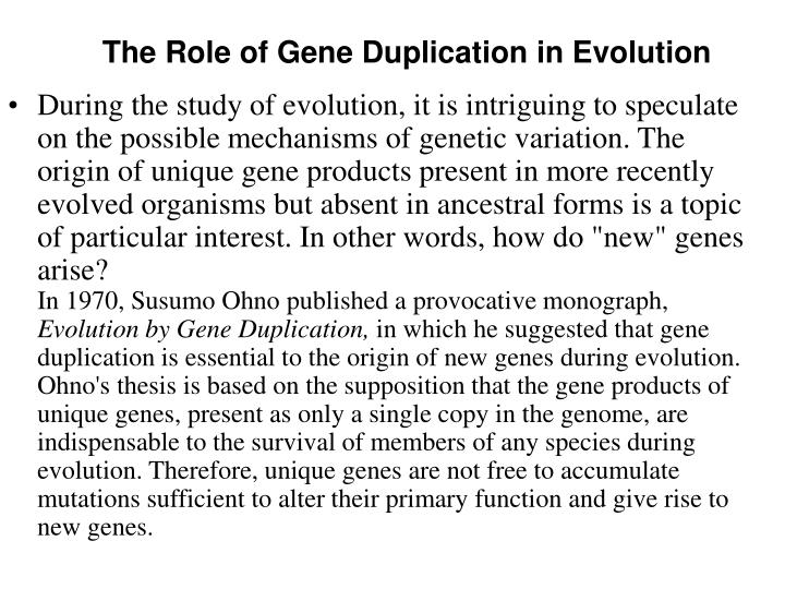 The Role of Gene Duplication in Evolution
