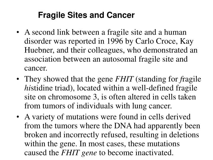 Fragile Sites and Cancer