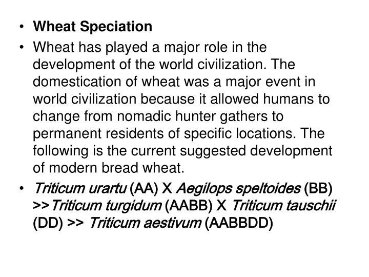 Wheat Speciation