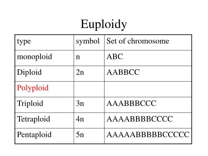 Euploidy