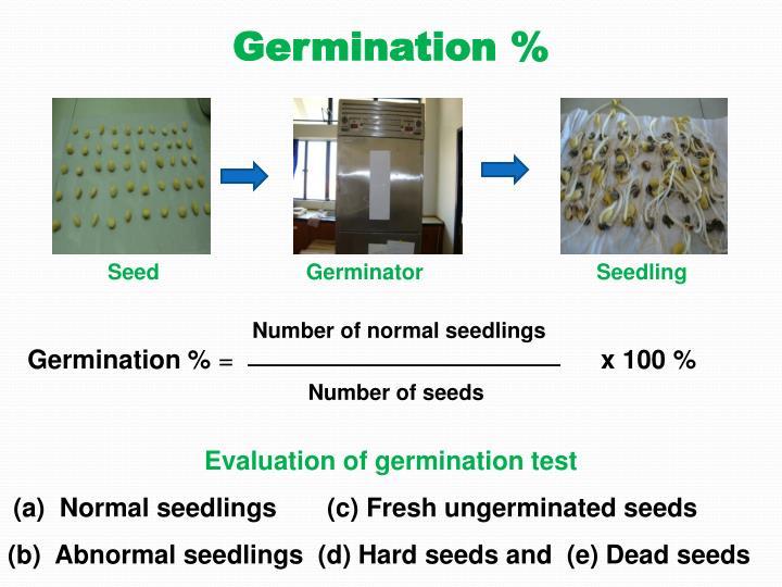 Germination %