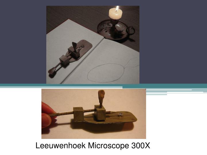 Leeuwenhoek Microscope 300X
