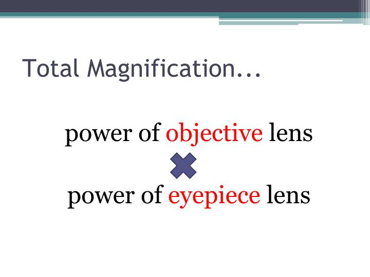 Total Magnification...