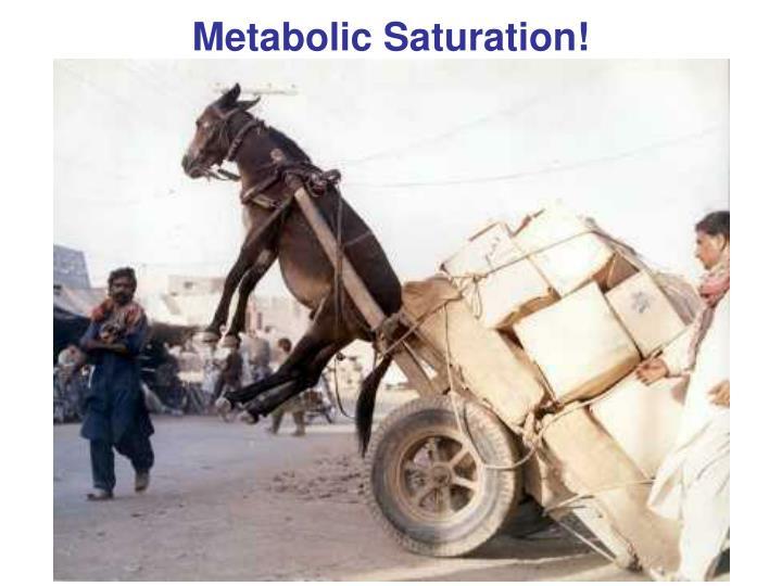Metabolic Saturation!