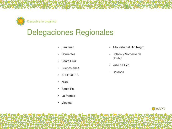 Delegaciones Regionales