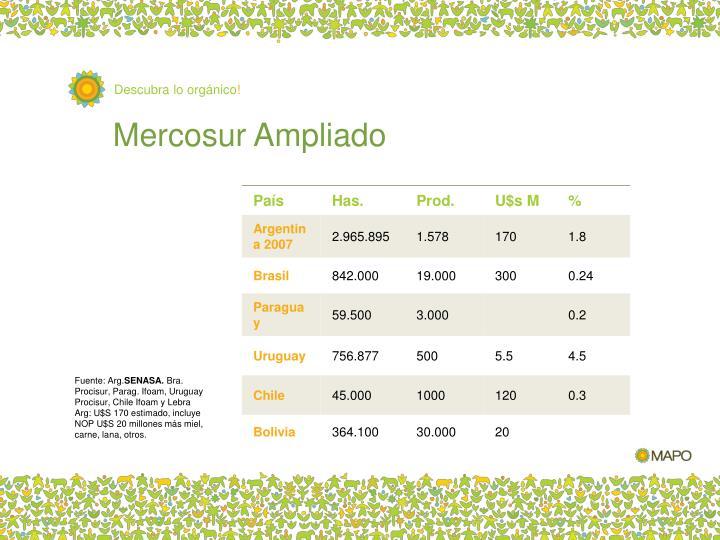 Mercosur Ampliado
