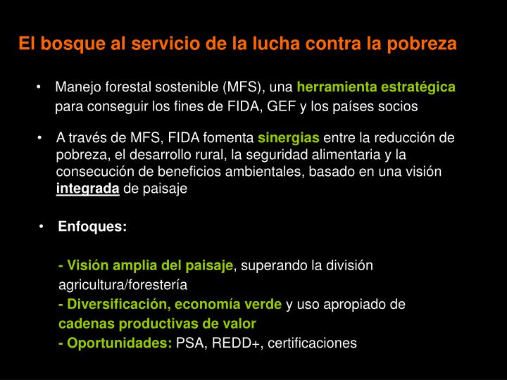 Manejo forestal sostenible (MFS), una