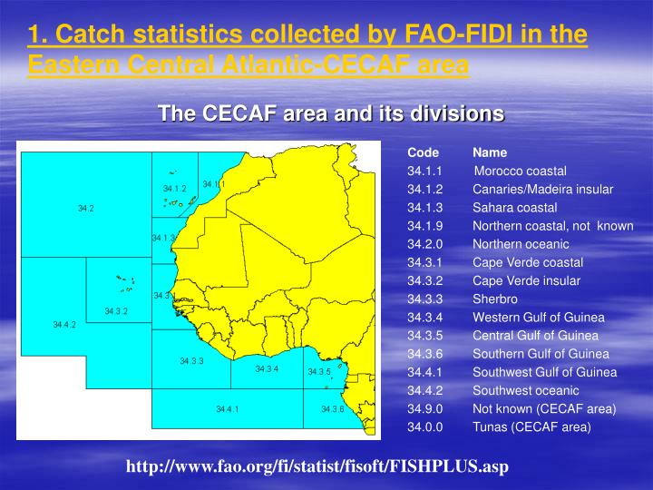 1 catch statistics collected by fao fidi in the eastern central atlantic cecaf area