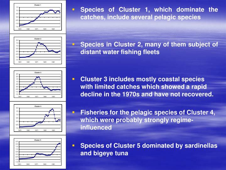 Species of Cluster 1, which dominate the catches, include several pelagic species