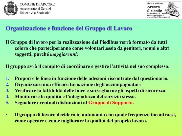 Organizzazione e funzione del Gruppo di Lavoro