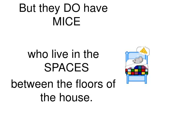 But they DO have MICE