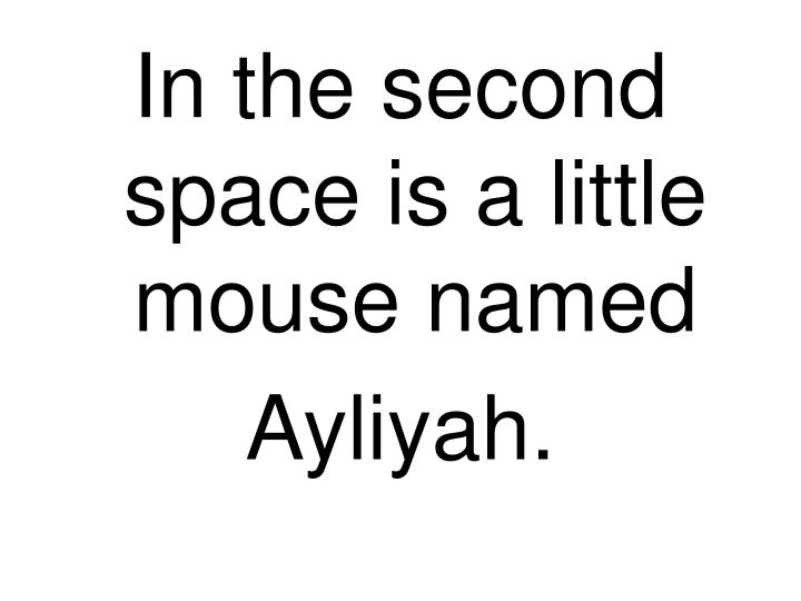 In the second space is a little mouse named