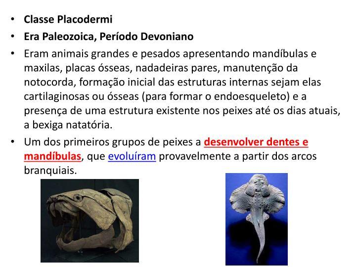 Classe Placodermi