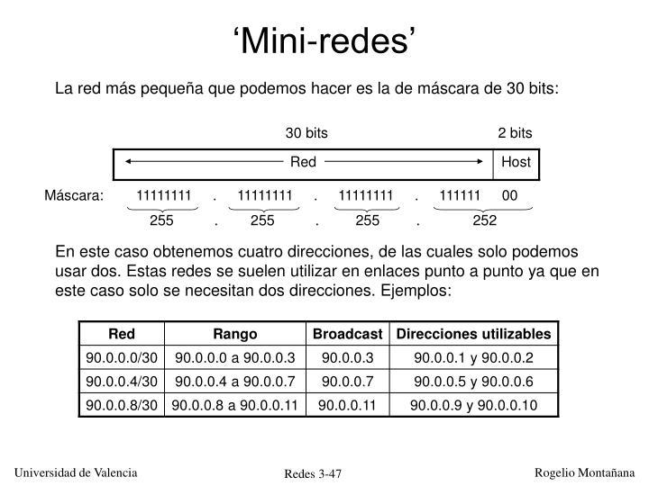 'Mini-redes'
